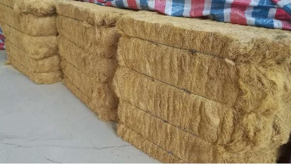 太萌竹木纤维生产基地实现规模化生产